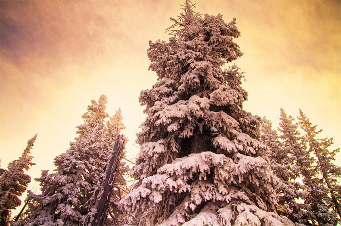 25 Stunning Winter Landscape Photos