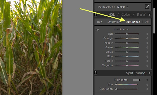 How to Boost Blue Skies in Lightroom
