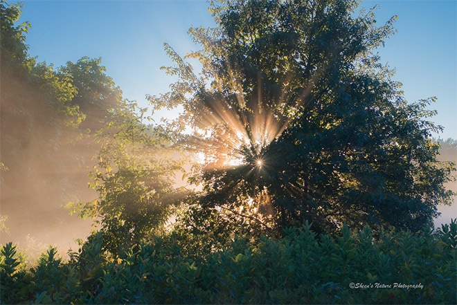 Sunrise Photography: Make Your Images Sparkle & Shine
