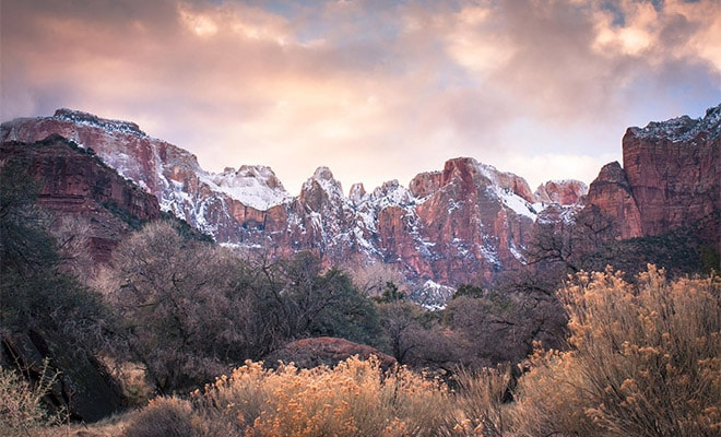 Photographer's Notebook: Guide to Capturing Zion National Park