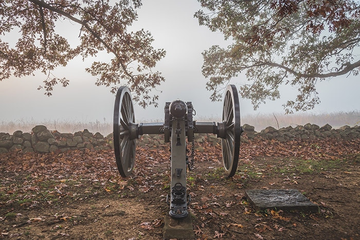 Cannon Along Confederate Avenue