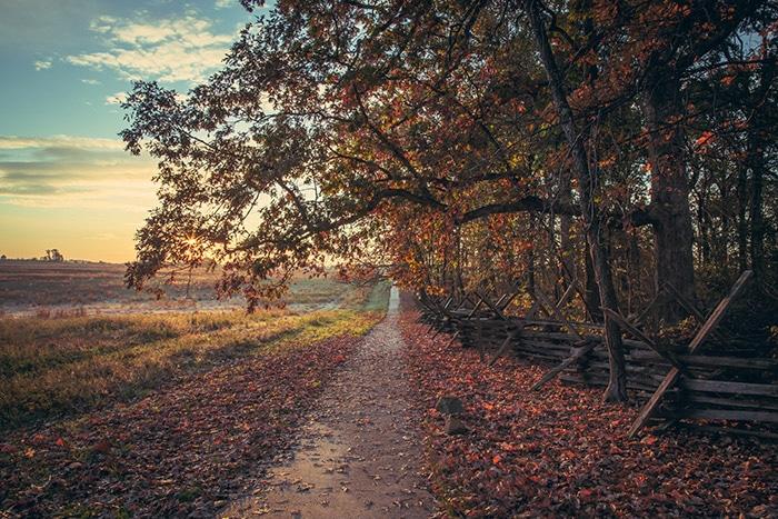 Path at Virginia Memorial