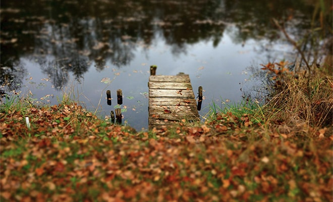 10 Tips for Beautiful Fall Photos