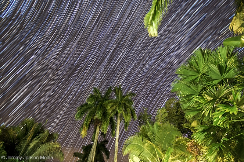 How To Capture Star Trails Like A Pro