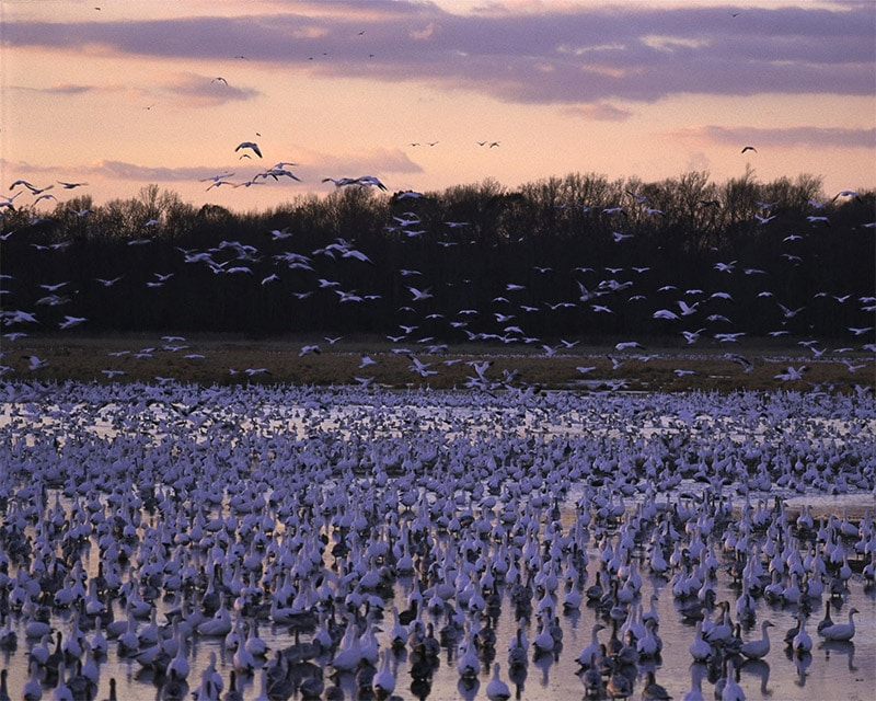 The Best Locations in Delaware for Photography