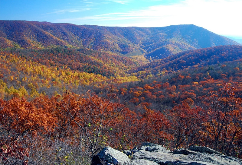 View from Bearfence Trail - photo by Mark Levisay / CC BY 2.0