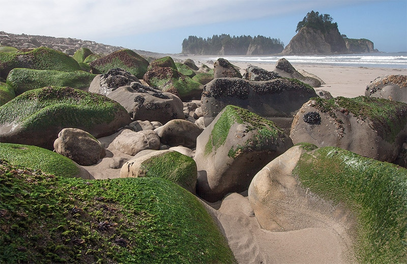 The Best Places to Photograph in Washington