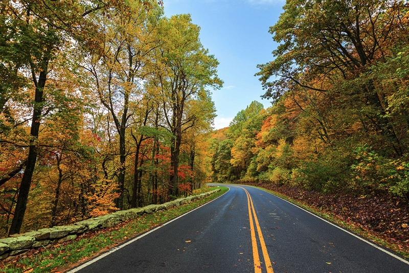 Skyline Drive - photo by Shenandoah National Park