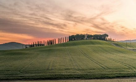 Where to Focus in a Landscape Photo
