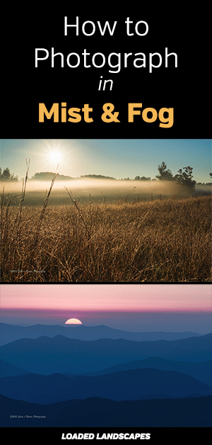 How to Photograph in Mist and Fog