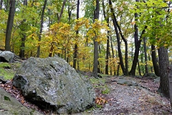 Catoctin Mountain Park