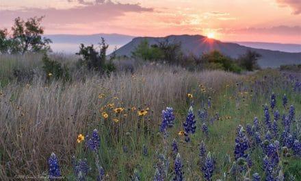 Photos of Big Bend National Park, Texas