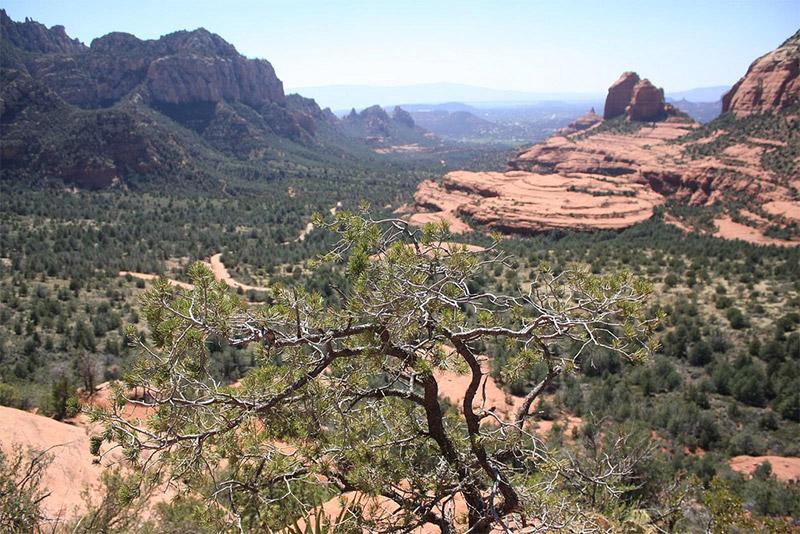 Schnebly Hill Road, Sedona (Arizona)