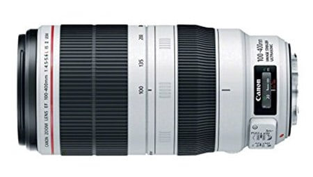 Reviews of the Best Telephoto Lenses for Canon DSLRs