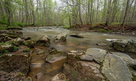 Photography Guide to Gunpowder Falls State Park (Maryland)