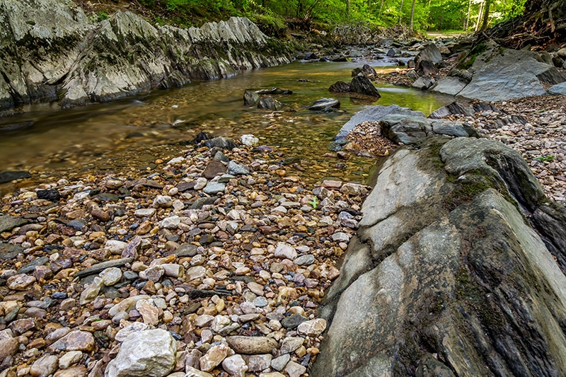 Photography Guide to Scott's Run Nature Preserve (Virginia)