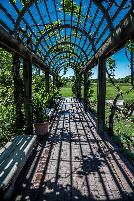 Photography Guide to the National Arboretum (DC)