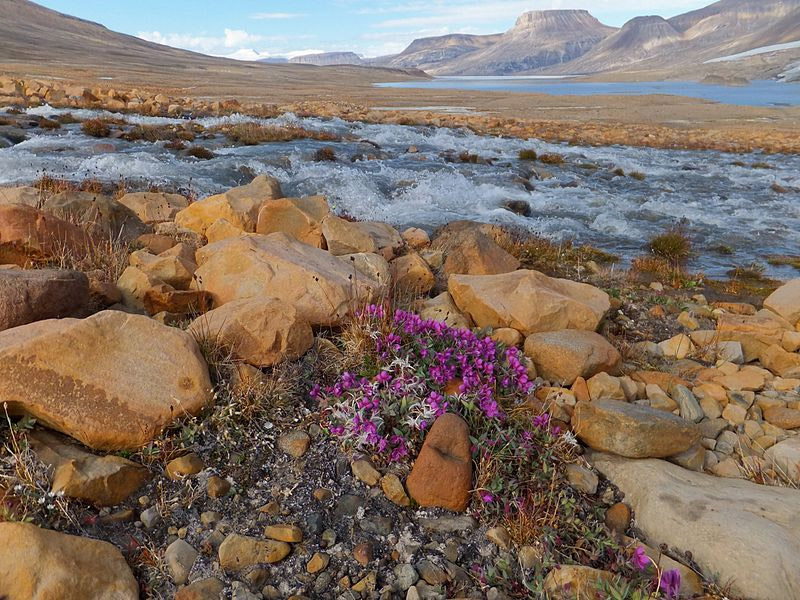 The Best Places to Photograph in Nunavut, Canada