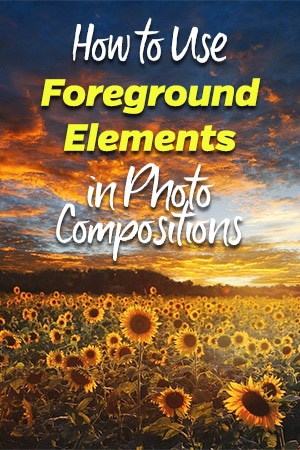 How to Use Foreground Elements in Photo Compositions