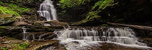Ricketts Glen State Park Photography Guide