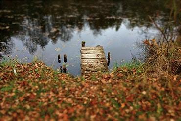 10 Tips for Beautiful Fall Photos
