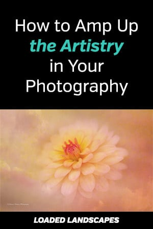 How to Amp Up the Artistry in Your Photography