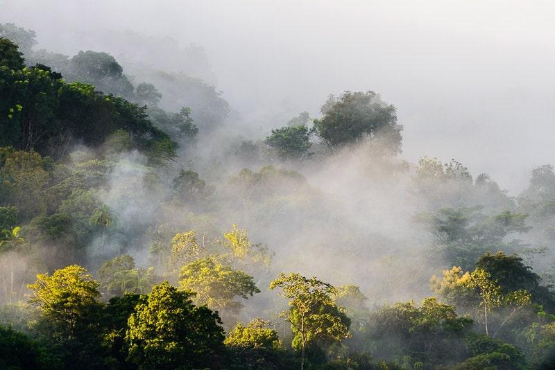 Sunrise over misty mountain rainforests view from Casa Mariposa; Santa Fe, Panama