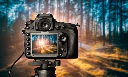 The Best Tripods and Why You Need it for Landscape Photography