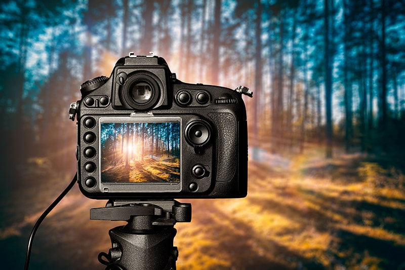 The Best Tripods for Landscape Photography