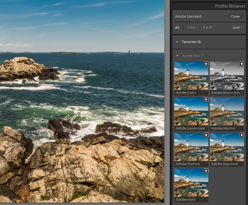Adobe Raw Profiles