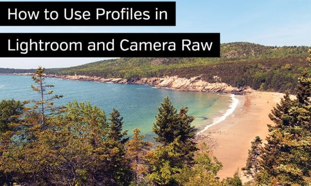 How to Use Profiles in Lightroom and Camera Raw