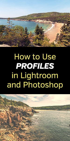 How to Use Profiles in Lightroom and Photoshop
