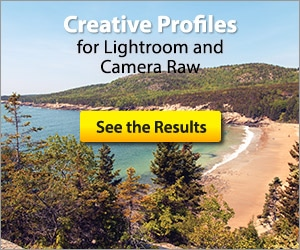 Creative Profiles for Lightroom and Camera Raw