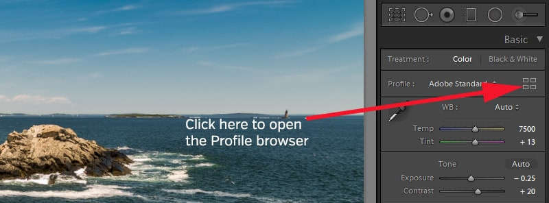 Profile browser icon in Lightroom