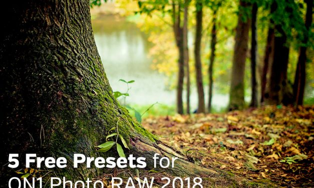 5 Free Presets for ON1 Photo RAW 2018