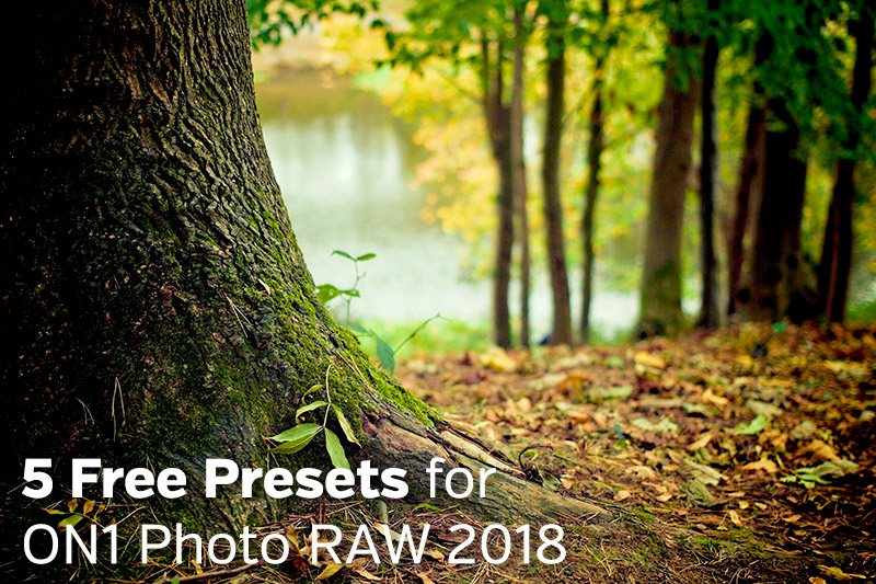 ON1 Photo RAW 2018 Presets