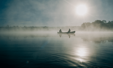 Fog and Mist: Tips, Photoshop, and Beautiful Examples