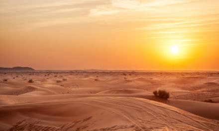 Desert Photography 101