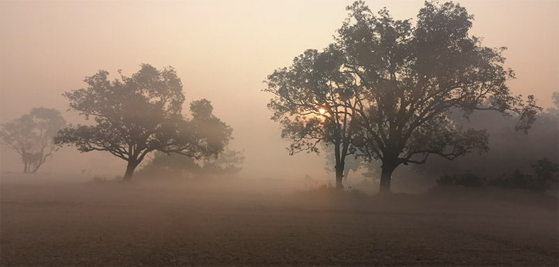 Photo by Sandeep Sharma / Unsplash License