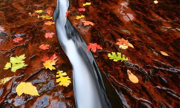 Top 10 National Parks to Visit and Photograph in the Fall