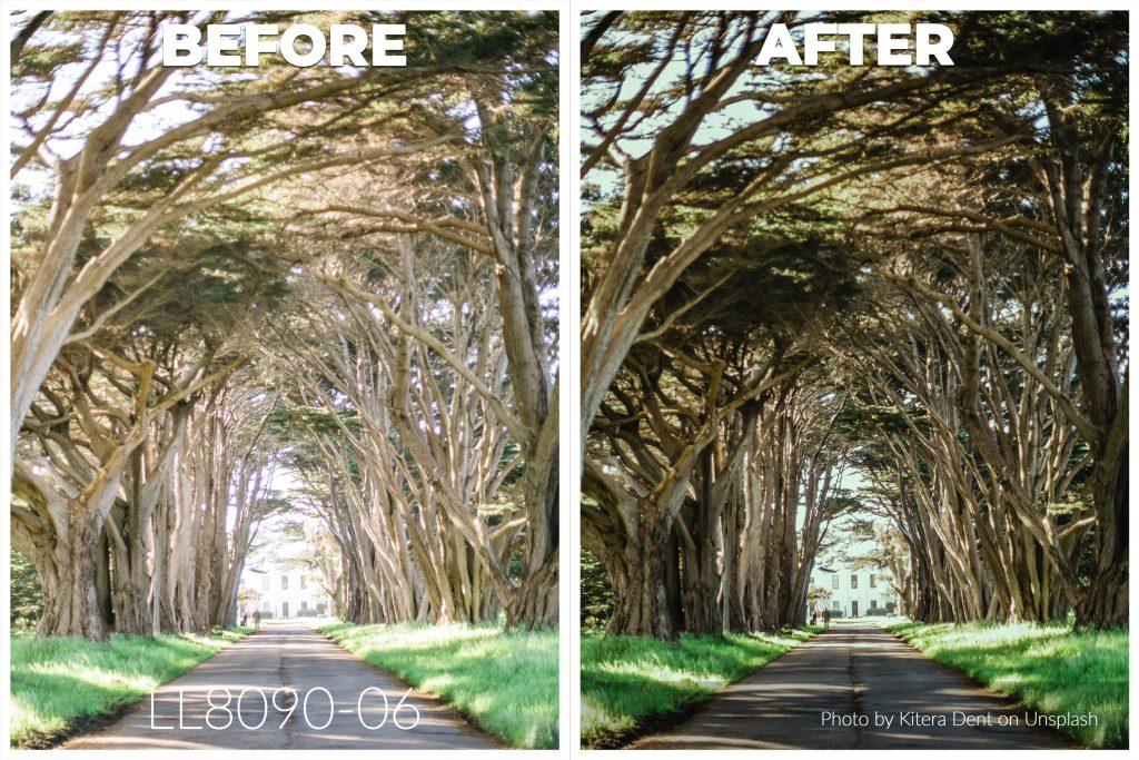 lightroom presets, landscape photography, nature photography