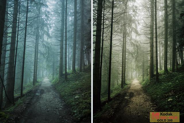 Kodak Gold 200, Film Preset for Landscape and Travel Photography, Lightroom Preset